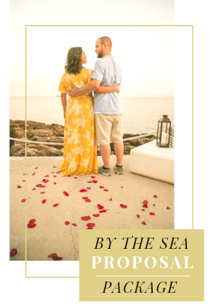 By the Sea Proposal in Portugal
