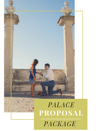 Palace Proposal in Portugal