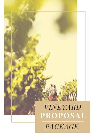 Vineyard Proposal Package