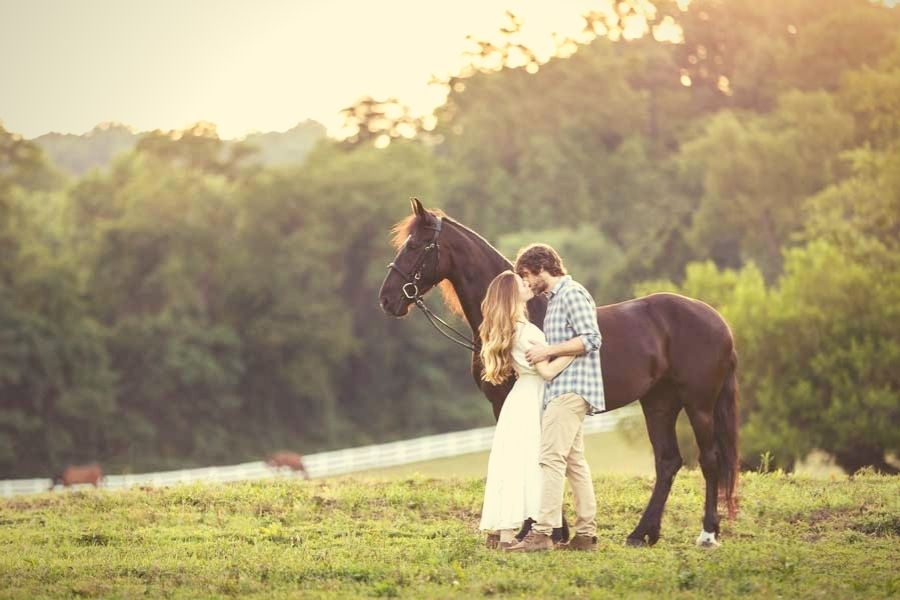 Horse Marrige Proposal Package in Portugal