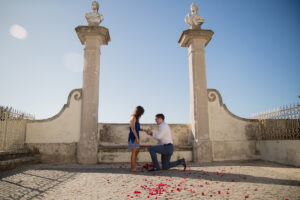 Palace Marriage Proposal Package